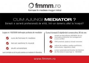 Flyer curs FMMM