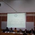 conferinta Ileana 2